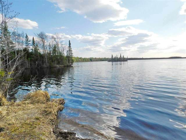 Neptune Lake Road, Rhinelander, WI 54501 (#50232166) :: Town & Country Real Estate