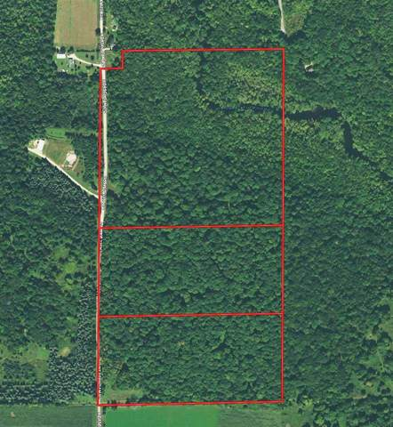 Weasel Dam Road, Tigerton, WI 54486 (#50232676) :: Ben Bartolazzi Real Estate Inc