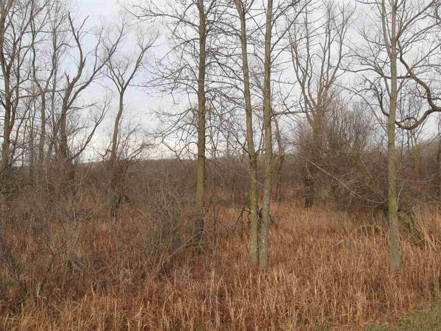 Swamp Road, Brussels, WI 54204 (#50232903) :: Ben Bartolazzi Real Estate Inc