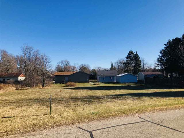 Riverside Drive, Shawano, WI 54166 (#50233056) :: Town & Country Real Estate
