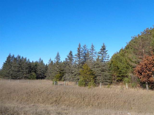 Harding Rd, Plainfield, WI 54966 (#50233176) :: Dallaire Realty