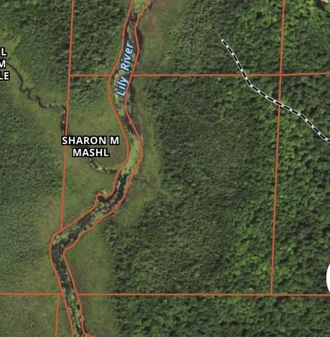 1905 Jungle Lake Road, Wabeno, WI 54566 (#50233529) :: Todd Wiese Homeselling System, Inc.