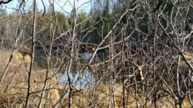 River Ridge Road, Wabeno, WI 54566 (#50233882) :: Todd Wiese Homeselling System, Inc.