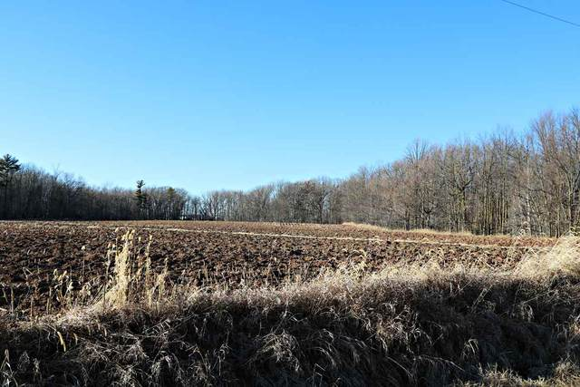 Section Line Road, Kaukauna, WI 54130 (#50234041) :: Todd Wiese Homeselling System, Inc.