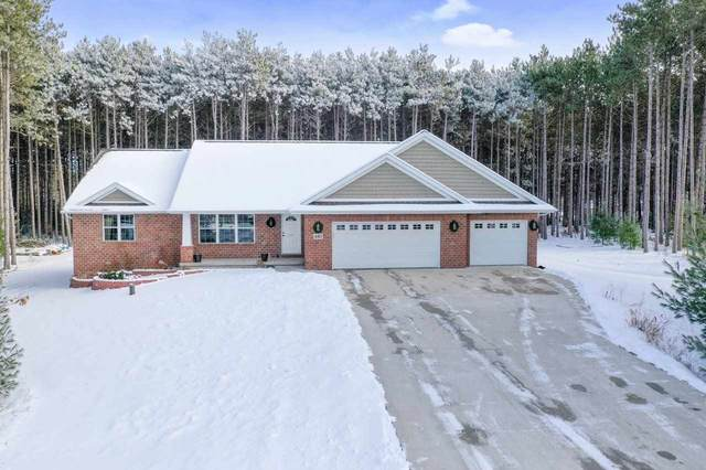 480 N Pine Road, Sobieski, WI 54171 (#50234174) :: Town & Country Real Estate