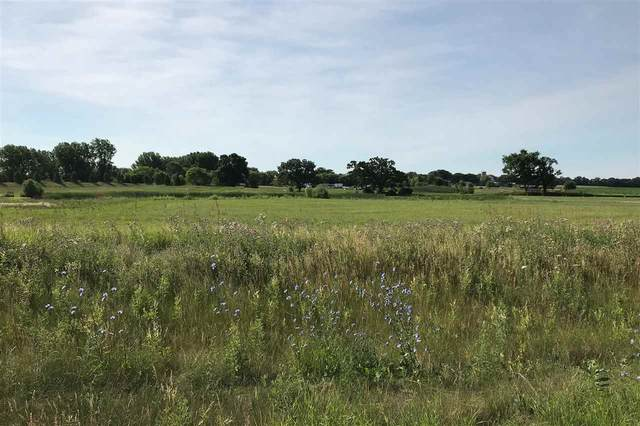 Bluebird Crossing, Omro, WI 54963 (#50234528) :: Town & Country Real Estate