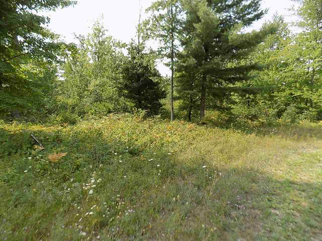 Red Pine Drive, White Lake, WI 54491 (#50234797) :: Town & Country Real Estate