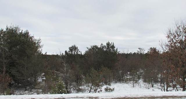 Hwy Ch, Coloma, WI 54930 (#50235232) :: Town & Country Real Estate