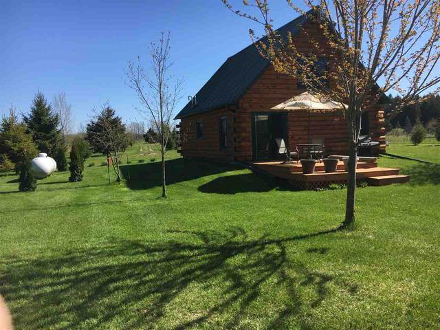 E6283 Trout Lane, Marion, WI 54950 (#50235902) :: Town & Country Real Estate