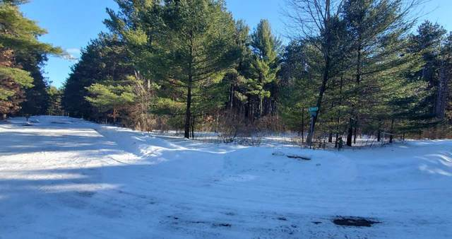 Deer Path Trail, Hancock, WI 54943 (#50236183) :: Symes Realty, LLC