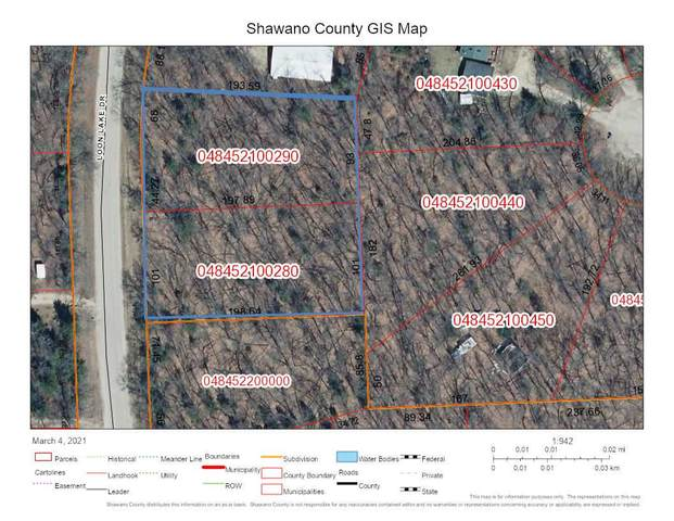 Loon Lake Drive, Shawano, WI 54166 (#50236297) :: Ben Bartolazzi Real Estate Inc