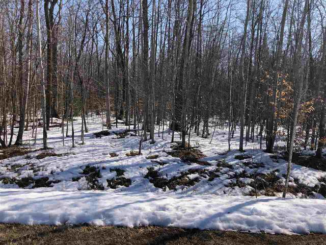 Mac Bailey Road, Oconto Falls, WI 54154 (#50236328) :: Town & Country Real Estate