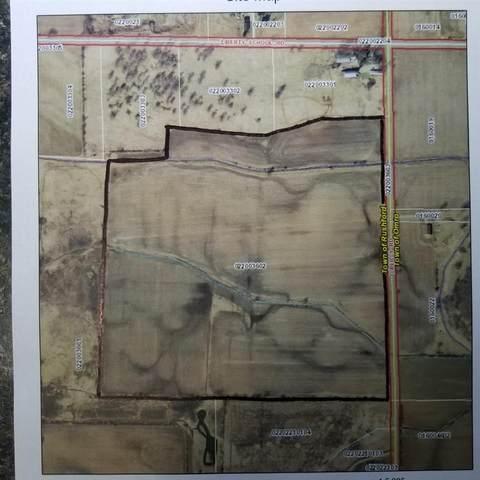 Oreilly Road, Omro, WI 54963 (#50236329) :: Carolyn Stark Real Estate Team