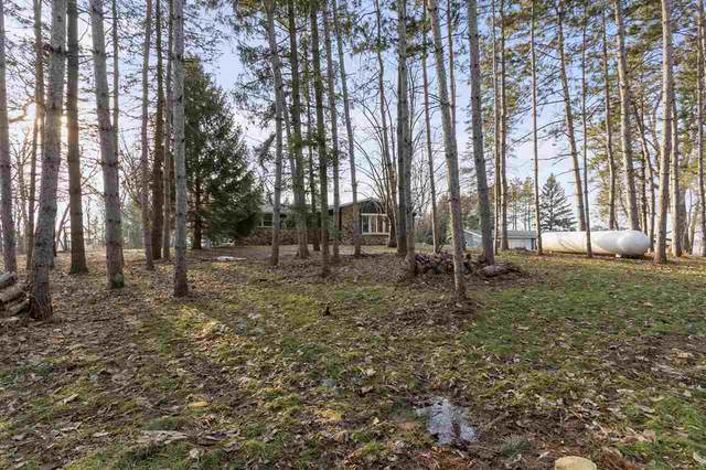 N4215 Laird Road, Black Creek, WI 54106 (#50236515) :: Symes Realty, LLC
