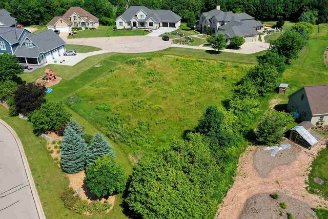 1607 Hidden Falls Court, De Pere, WI 54115 (#50237253) :: Todd Wiese Homeselling System, Inc.