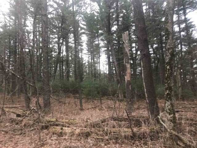 Forest Drive, Hancock, WI 54943 (#50237387) :: Symes Realty, LLC