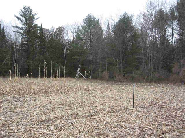 Red Banks Road, Suring, WI 54174 (#50237729) :: Town & Country Real Estate