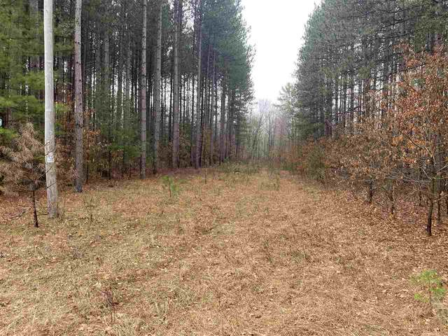 Back Acres Road, BEECHER, WI 54156 (#50238002) :: Todd Wiese Homeselling System, Inc.