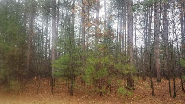 N Wilson Lake Circle, Wild Rose, WI 54984 (#50238088) :: Dallaire Realty