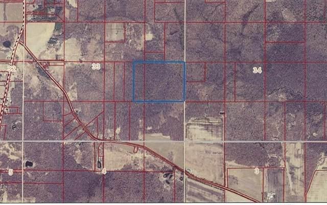 W3810 Chicago Road, Redgranite, WI 54970 (#50238374) :: Carolyn Stark Real Estate Team