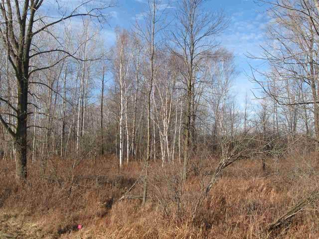 Swamp Road, Brussels, WI 54204 (#50238456) :: Ben Bartolazzi Real Estate Inc
