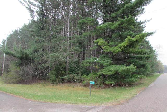 N2164 Wilson Drive, Waupaca, WI 54981 (#50238812) :: Ben Bartolazzi Real Estate Inc