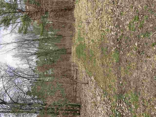 W2377 Bent Tree Road, Keshena, WI 54135 (#50238961) :: Carolyn Stark Real Estate Team