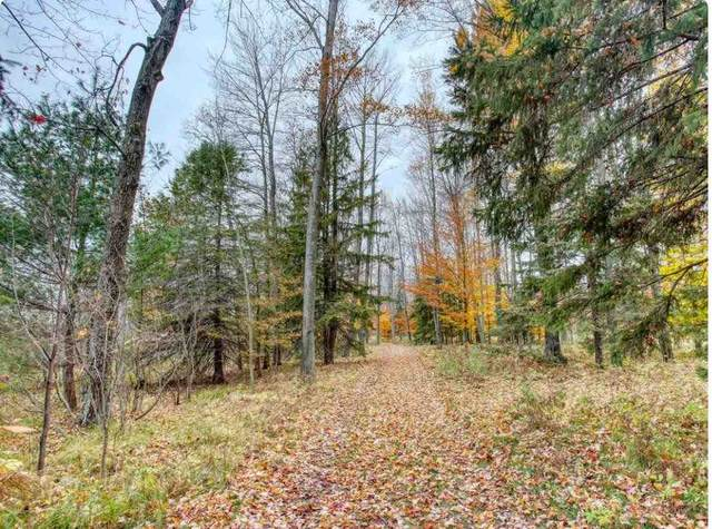W Rector Road, Middle Inlet, WI 54177 (#50239170) :: Symes Realty, LLC