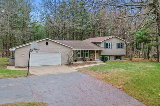 6387 Aspen Drive, Sobieski, WI 54171 (#50239325) :: Ben Bartolazzi Real Estate Inc