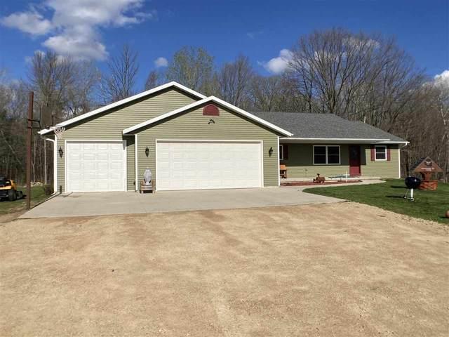 E11871 Bussian Road, Clintonville, WI 54929 (#50239331) :: Ben Bartolazzi Real Estate Inc