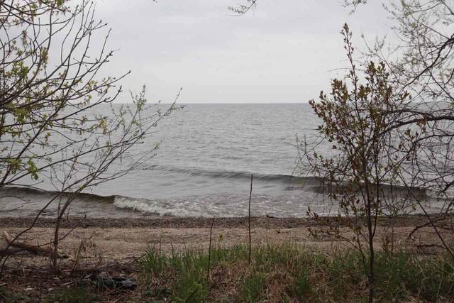 Elmwood Beach Road, Chilton, WI 53014 (#50239389) :: Todd Wiese Homeselling System, Inc.
