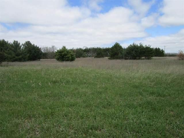 Tomahawk Trail, Waupaca, WI 54981 (#50239545) :: Carolyn Stark Real Estate Team