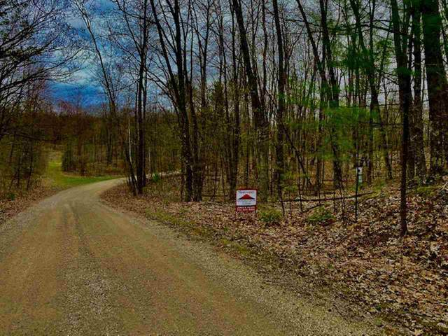 E Lost Lake Road, Wausaukee, WI 54177 (#50239684) :: Todd Wiese Homeselling System, Inc.