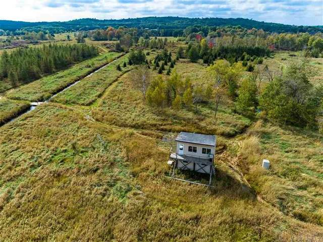 N6006 28TH Road, Pine River, WI 54965 (#50239799) :: Dallaire Realty