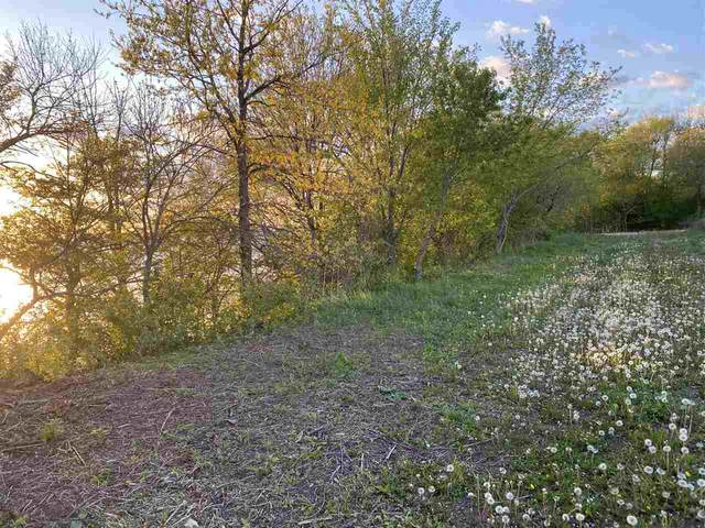 Lakeshore Drive, Chilton, WI 53014 (#50240251) :: Town & Country Real Estate