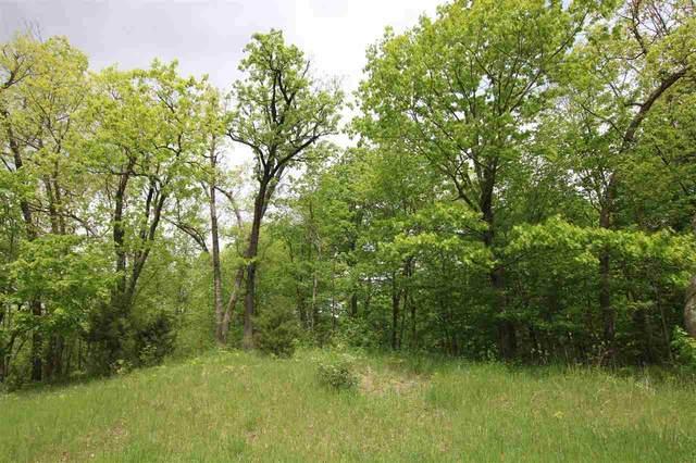 Red Oak Drive, Campbellsport, WI 53010 (#50240482) :: Carolyn Stark Real Estate Team