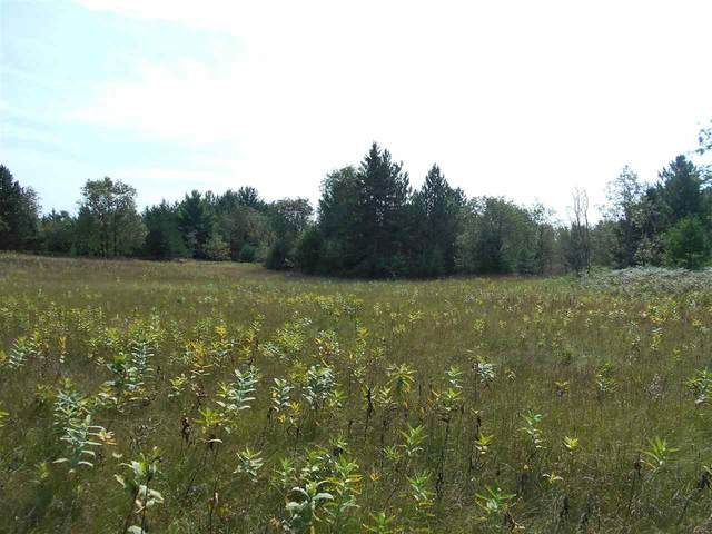 Valley Lane, Armstrong Creek, WI 54103 (#50240696) :: Symes Realty, LLC