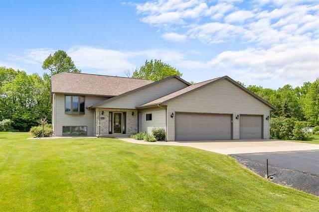N271 Marion Avenue, Appleton, WI 54915 (#50240908) :: Carolyn Stark Real Estate Team