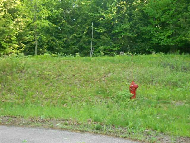 Country View Circle, Tigerton, WI 54486 (#50240955) :: Town & Country Real Estate