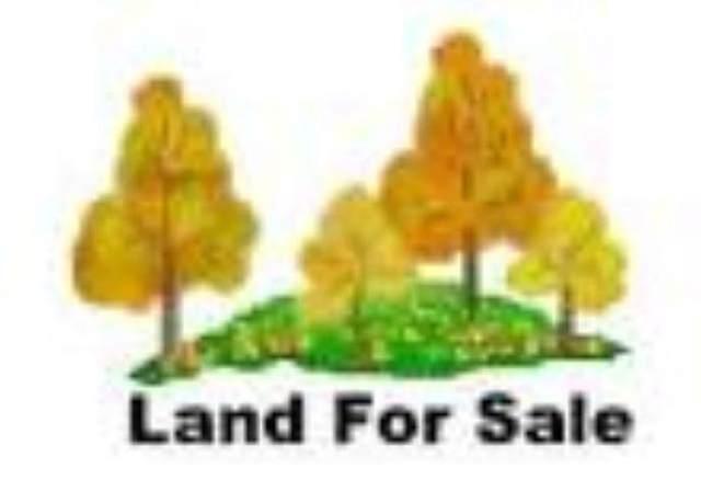 Rader Road, Marinette, WI 54143 (#50241049) :: Carolyn Stark Real Estate Team