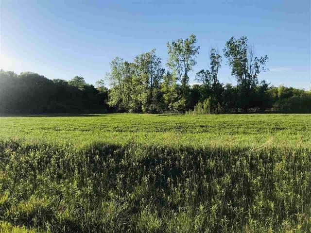 Black Walnut Way, Sobieski, WI 54171 (#50241184) :: Carolyn Stark Real Estate Team
