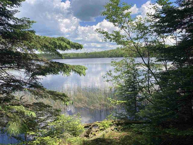 Bear Lake Lane, Wabeno, WI 54566 (#50241373) :: Carolyn Stark Real Estate Team