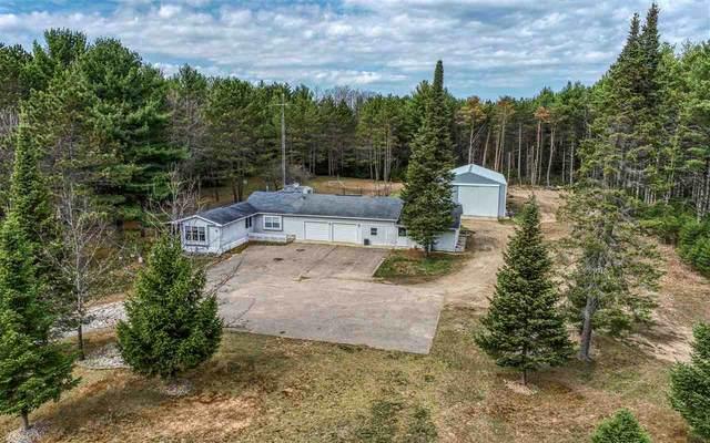 N1841 William Drive, Waupaca, WI 54981 (#50241528) :: Carolyn Stark Real Estate Team