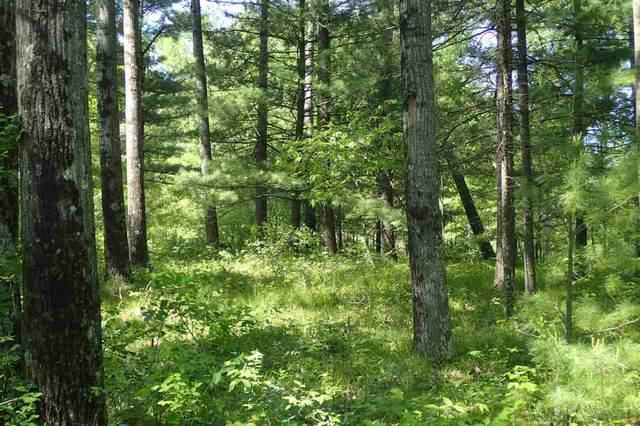 Woods Road, Shawano, WI 54166 (#50241568) :: Carolyn Stark Real Estate Team