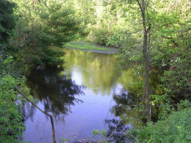 28TH Court, Pine River, WI 54965 (#50241640) :: Carolyn Stark Real Estate Team