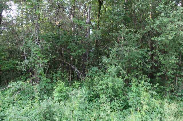 15TH Road, Wild Rose, WI 54984 (#50241783) :: Symes Realty, LLC