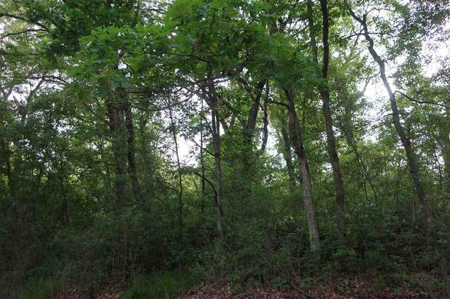 15TH Road, Wild Rose, WI 54984 (#50241784) :: Symes Realty, LLC