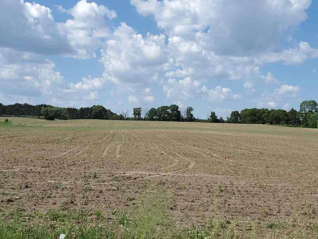 Cypress Avenue, Coloma, WI 54930 (#50241827) :: Symes Realty, LLC