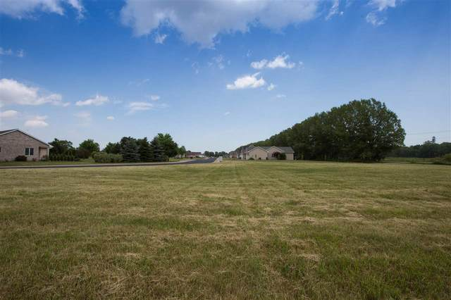 115 Theunis Drive, Wrightstown, WI 54180 (#50241847) :: Carolyn Stark Real Estate Team