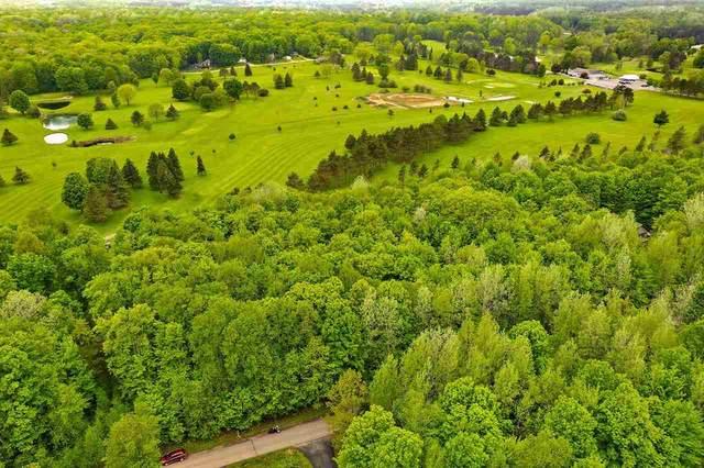 Reagan Lane, Lakewood, WI 54138 (#50241947) :: Carolyn Stark Real Estate Team